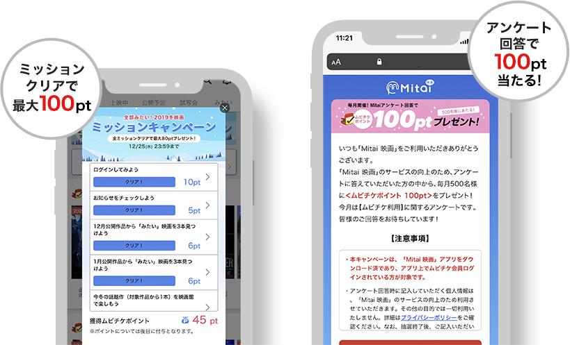 Mitaiのキャンペーン紹介