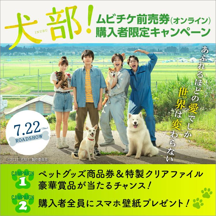 『犬部!』キャンペーン